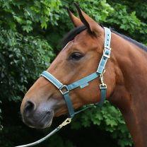 Bucas  Halter Dublin Pony Mallard Green
