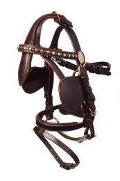 Luxury Leather Driving Bridle