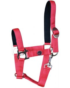 Harry's Horse Halter bridoonded