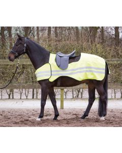 Odblaskowy dywanik do ćwiczeń konia Harrego
