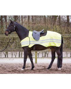 Harry's Horse Arkusz ćwiczeń Odblaskowy