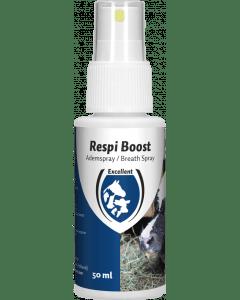 Hofman Respi Boost (spray do oddychania)