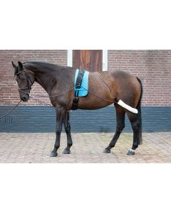 Harry's Horse Lunging Relief