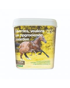 NAF Klacze, źrebięta i rosnące konie