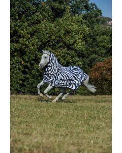 Bucas Słodka Zebra