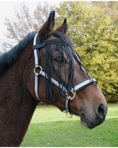 Hofman Pas do Bryczesy Koń