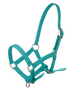 Imperial Riding Halter Nylon