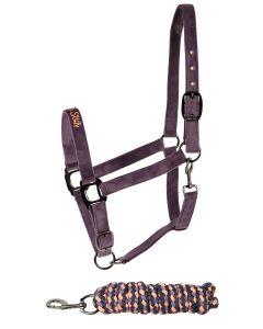 Harrys Horse Halterset Equestrian Society