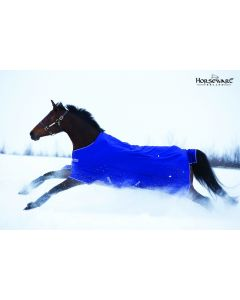 Horseware Amigo Hero 6 Pony Turnout Medium 200g