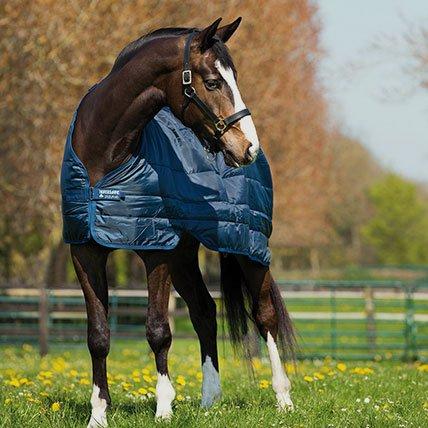 Derki zimowe od 165 cm (koń)